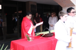 7- Rodel Faller blesses the palms before Mass.